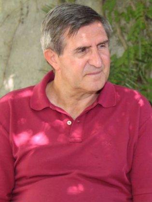 Giuliano Vigini